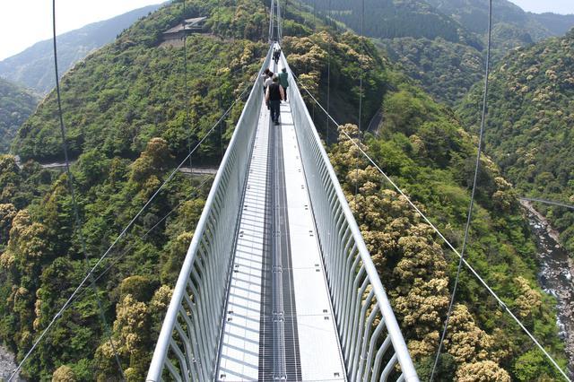 画像2: 【休日】ユネスコエコパーク認定の綾の照葉樹林を渡る|照葉大吊橋(綾町)