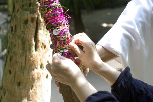画像5: 【休日】亜熱帯植物が群生するスピリチュアルアイランド|青島神社