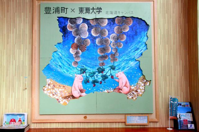 """画像: 豊浦町が噴火湾ホタテ養殖の発祥の地。""""みみづり""""なる吊り下げ方式ゆえに砂を噛まない!"""