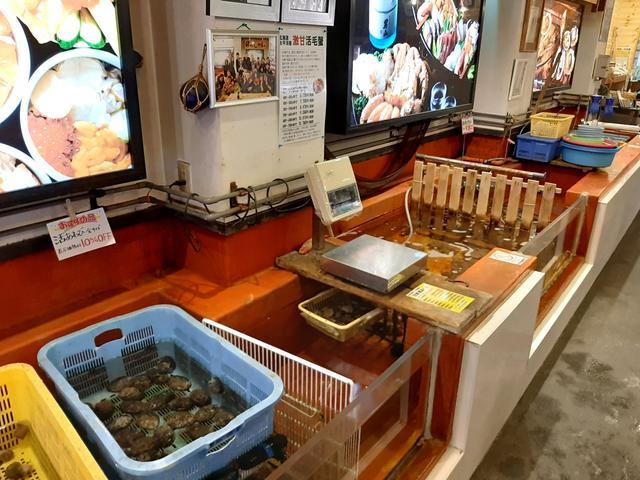 画像: 活ホタテやマツカワなど新鮮な海産物が入った、紫外線殺菌装置完備の生簀