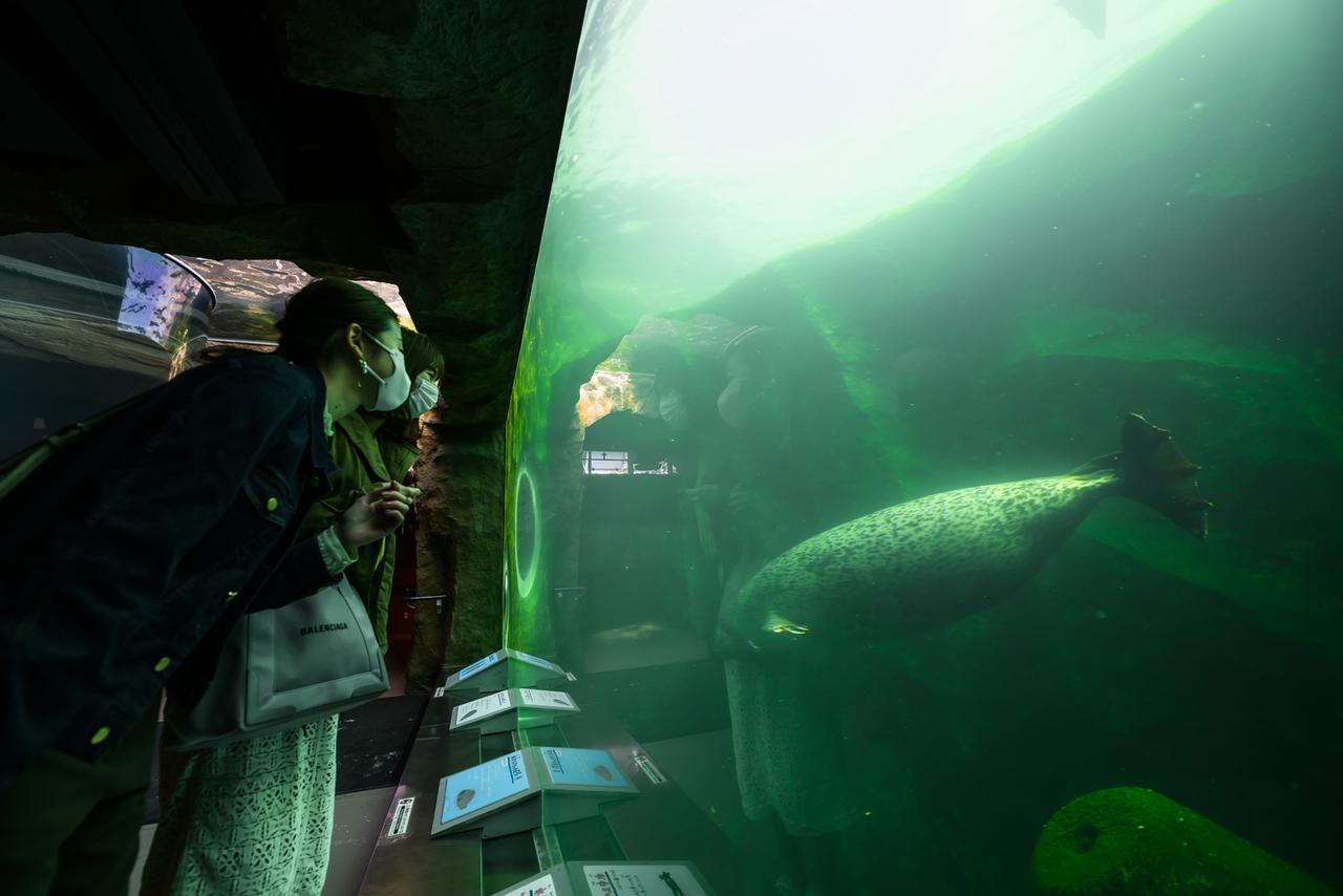 画像18: 【旭川空港発着】2泊3日で新緑の旭川エリアを楽しみ尽くすモデルコース