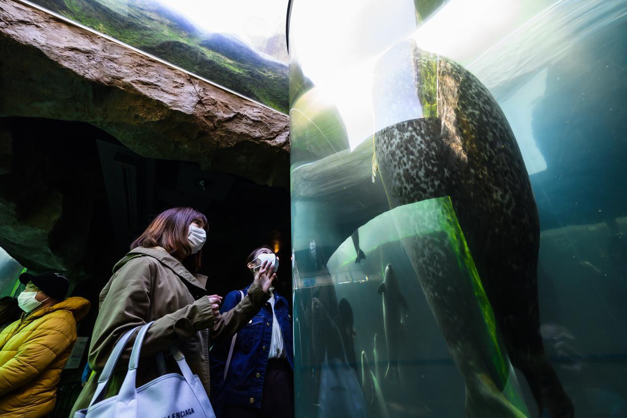 画像19: 【旭川空港発着】2泊3日で新緑の旭川エリアを楽しみ尽くすモデルコース