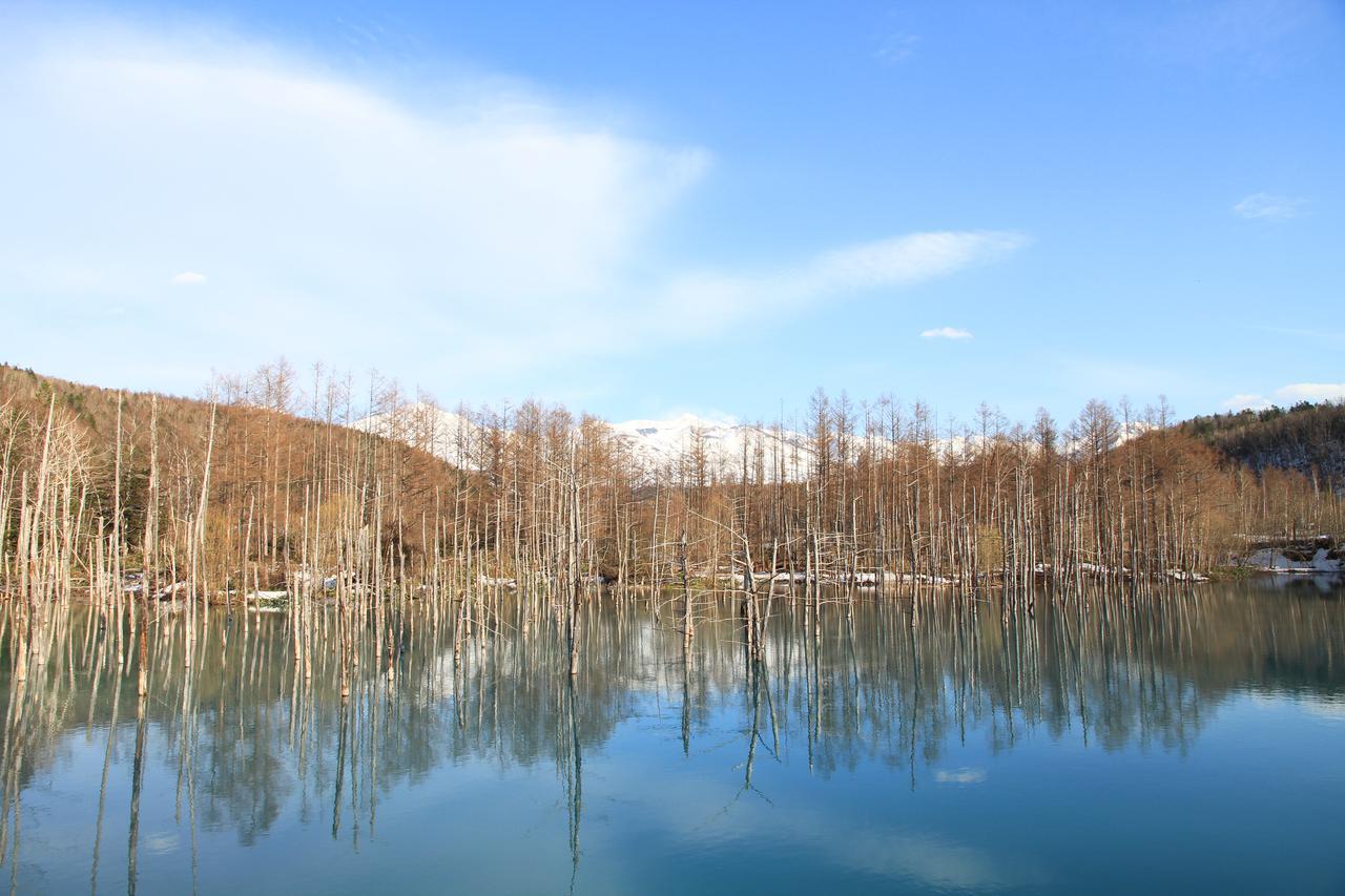 画像34: 【旭川空港発着】2泊3日で新緑の旭川エリアを楽しみ尽くすモデルコース