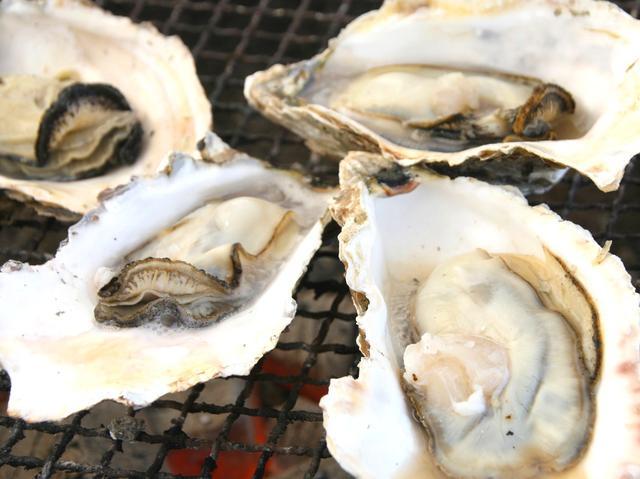 画像: 活牡蠣の炭火焼き。抜群の鮮度と丁寧な下処理で、まさに絶品