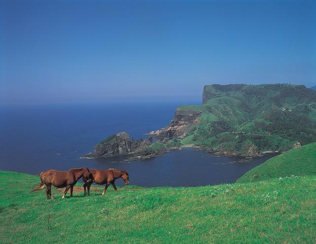 画像1: 【島前】国賀海岸