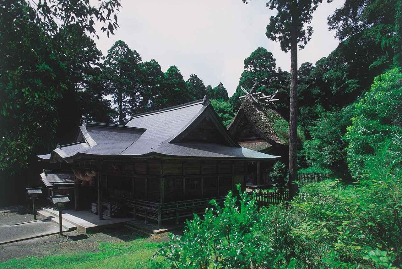 画像1: 【島後】玉若酢命神社