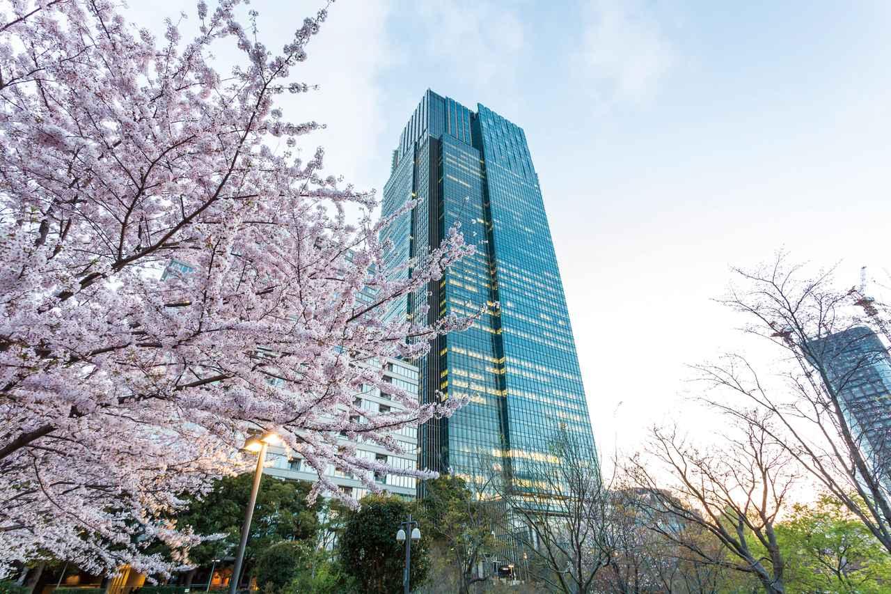 画像1: その街での旅の記憶とつながる香り|ザ・リッツ・カールトン東京