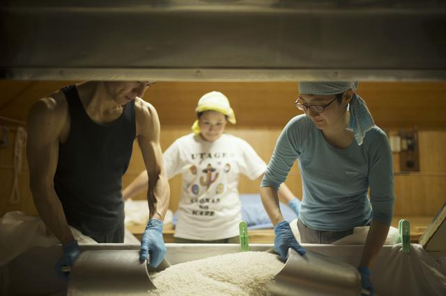 画像3: 日本最古の酒米・雄町を守り抜く岡山の酒蔵というプライド|辻本店【岡山県真庭市】