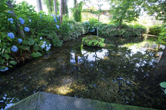 画像1: 【絶景⑦】足清水などを楽しめる「六郷湧水群」で癒やしのひとときを(美郷町)