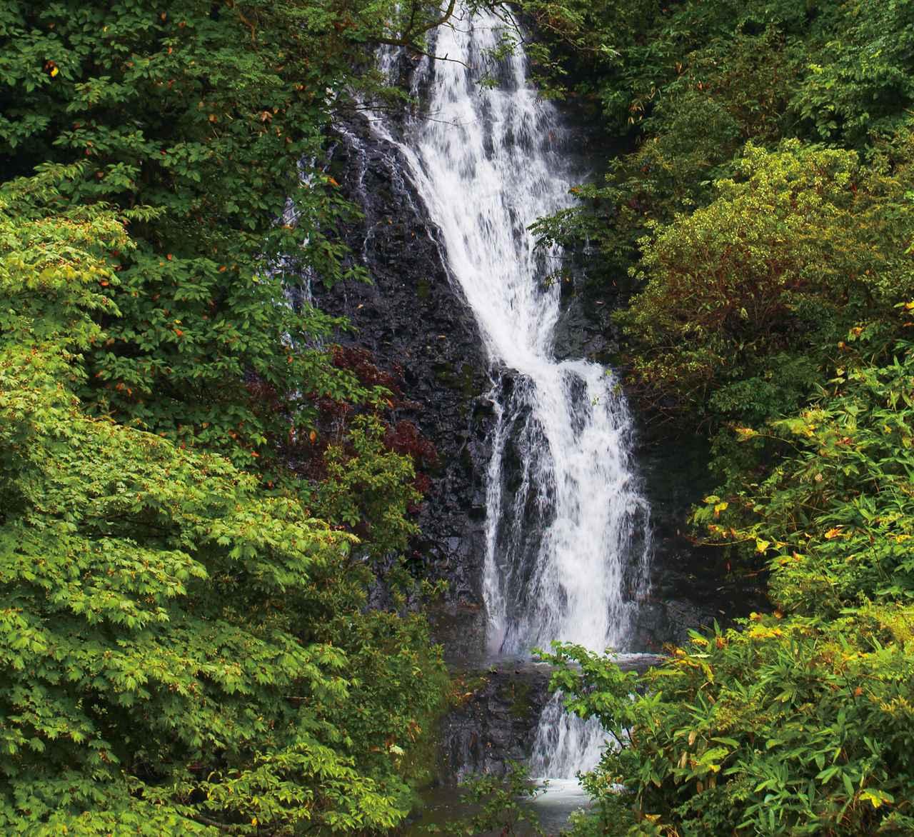 画像1: 【絶景①】「七滝」の壮大さに驚き、水しぶきに涼む(小坂町)