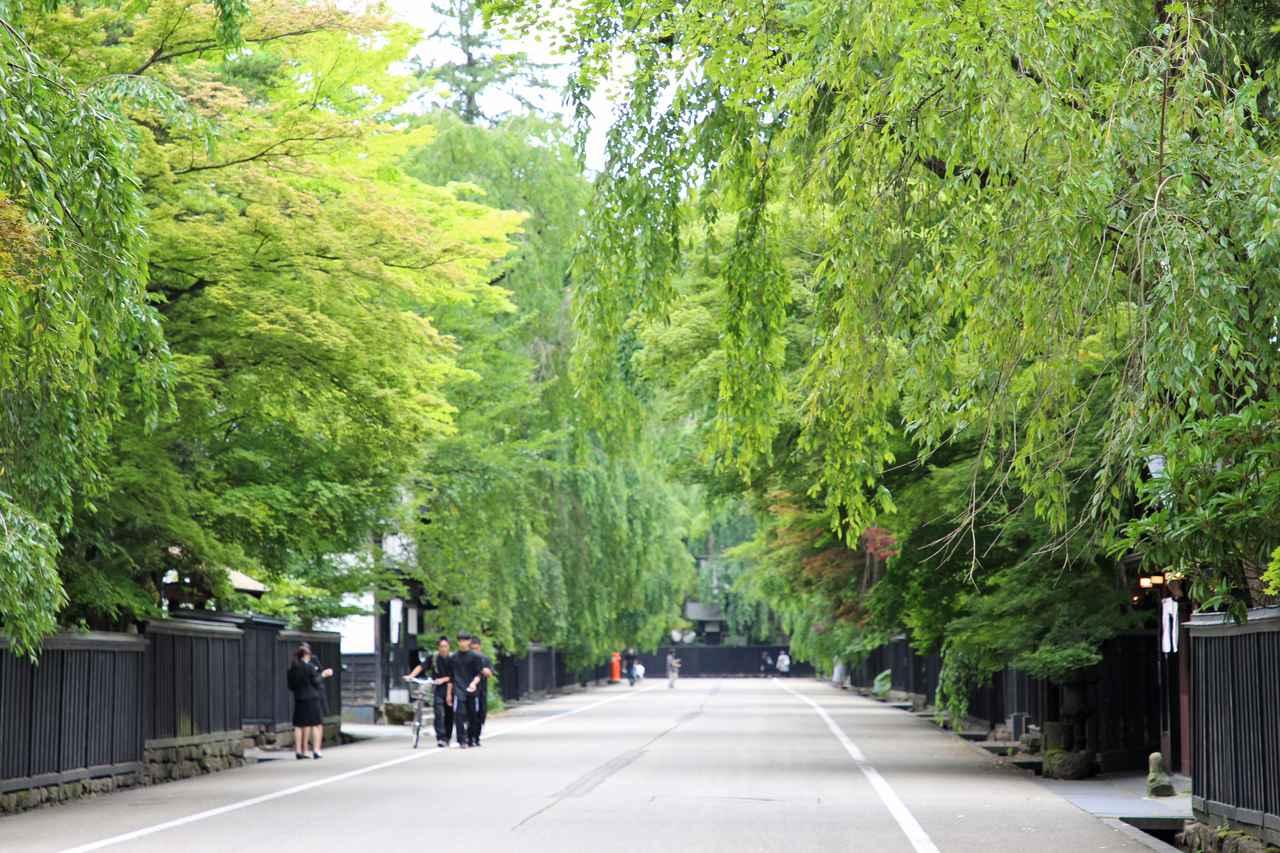 画像31: 夏こそ美しい。秋田・夏の絶景スポットを巡る旅【2021年版】