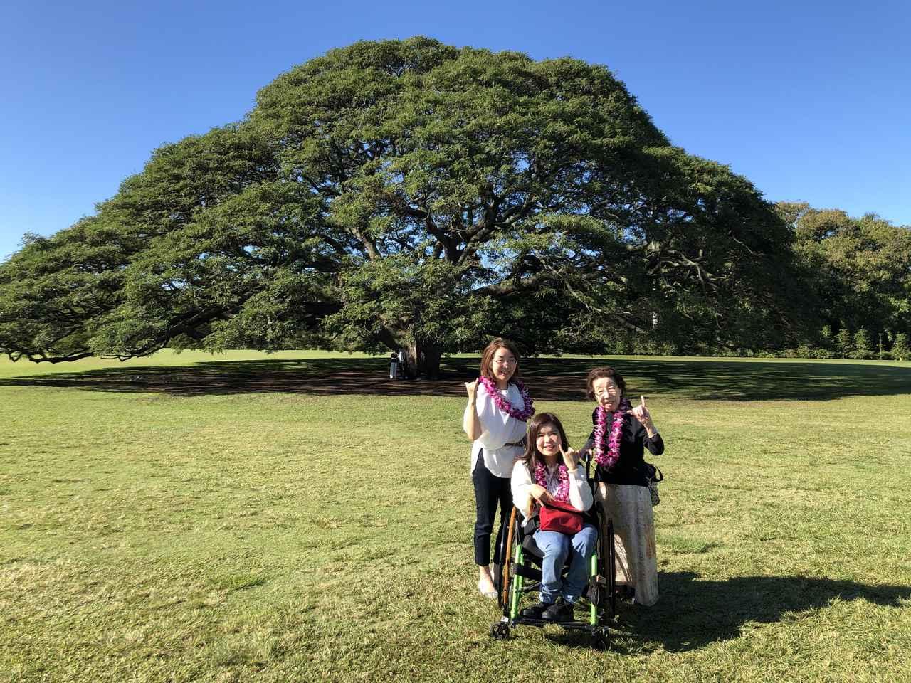 画像: 1日目のオアフ島観光で立ち寄ったモアナルア・ガーデン(大石さんご家族)