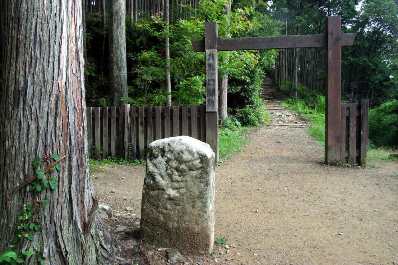 画像1: パワースポット・熊野古道で森林浴