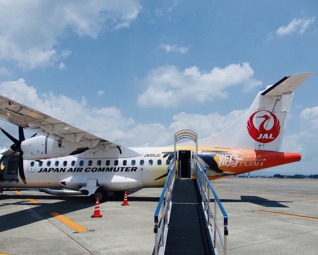 画像: 初号機と2号機にはハイビスカス、5号機にはコウノトリをデザインした特別塗装が機体に施されています(撮影:英亭或 巡)