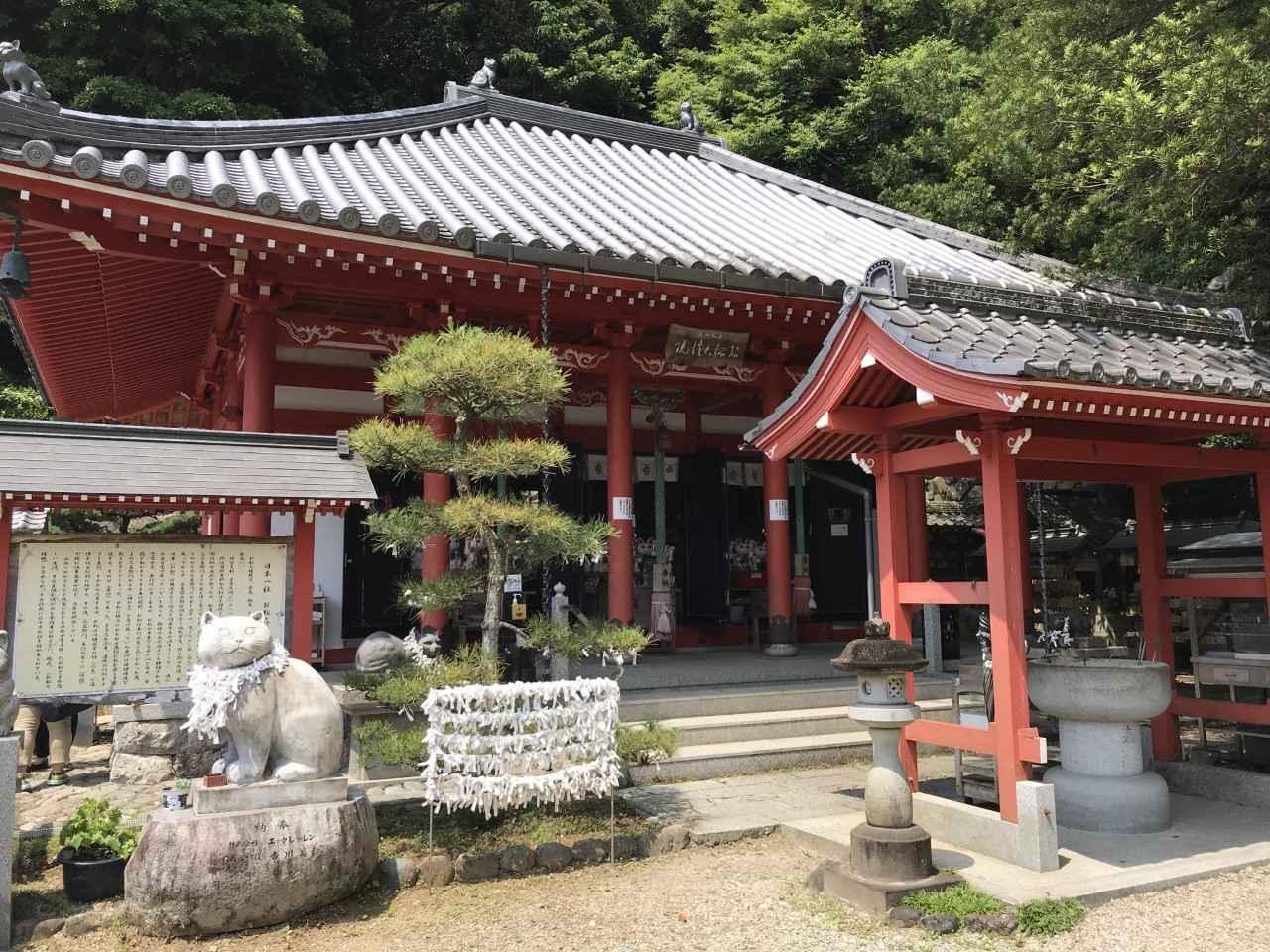 画像5: もう1歩先へ、徳島の魅力を再発見する旅