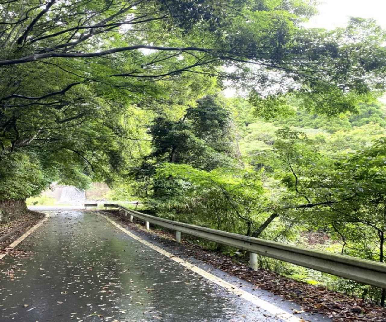画像4: 宮崎県えびの市 絶景の宝庫でサイクリングを満喫!