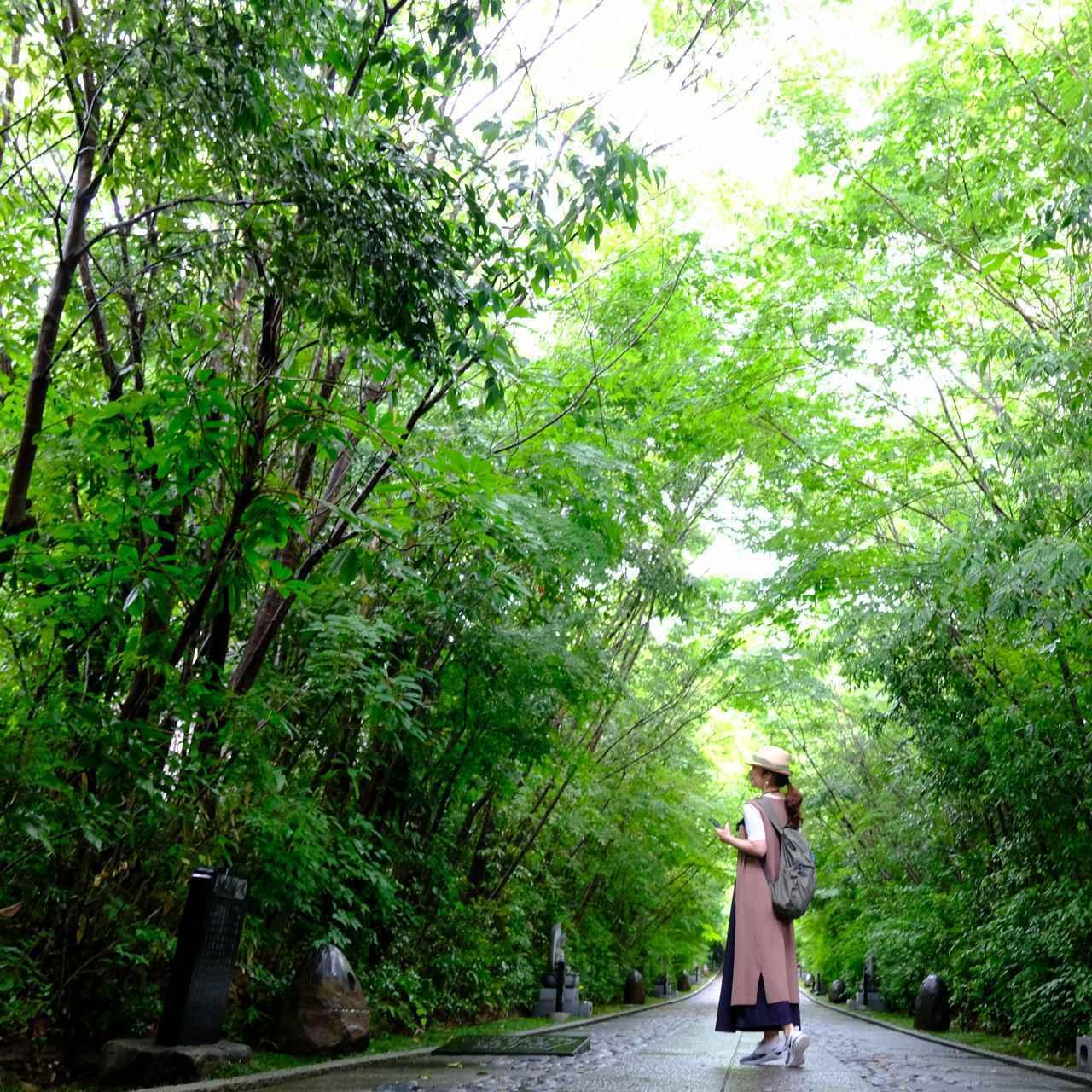 画像: 城下町の伝統を肌で感じる夏の旅、仙台1泊2日おすすめコース - OnTrip JAL