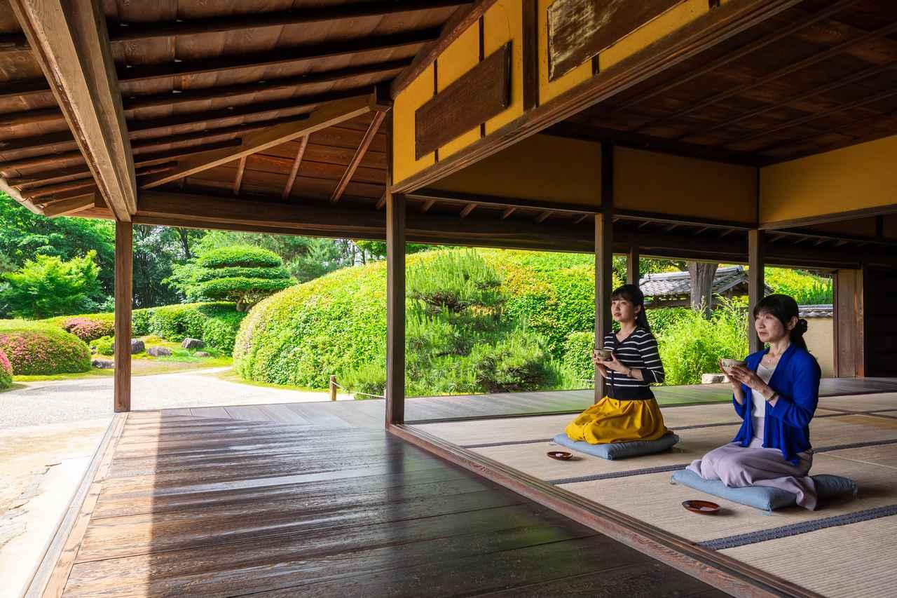 画像3: 茶の湯発祥の地で奈良を体感すべく、「慈光院」でお抹茶をいただく