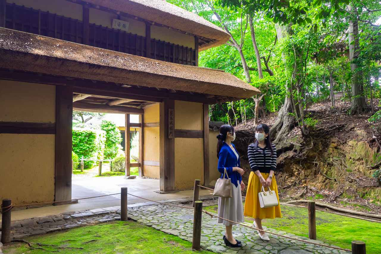画像1: 茶の湯発祥の地で奈良を体感すべく、「慈光院」でお抹茶をいただく