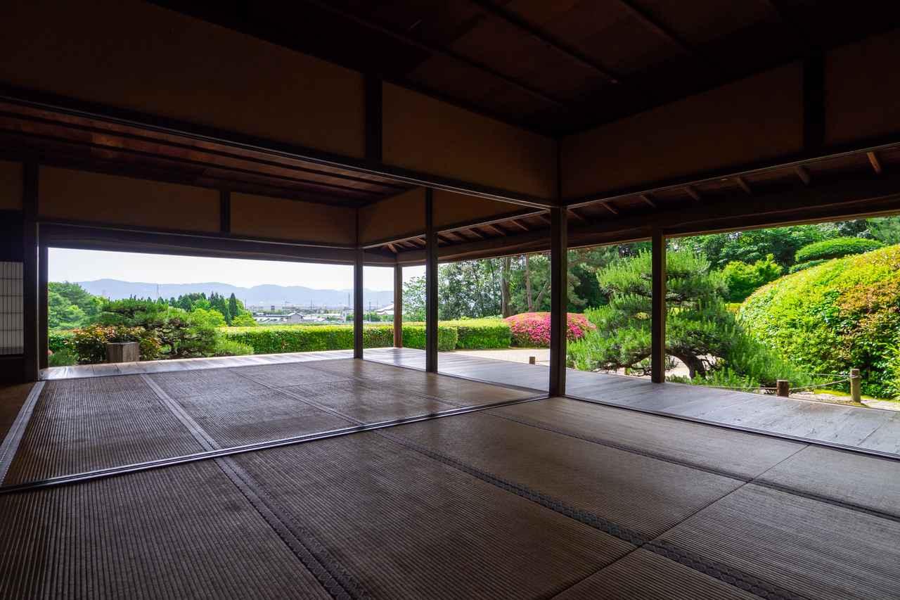 画像4: 茶の湯発祥の地で奈良を体感すべく、「慈光院」でお抹茶をいただく