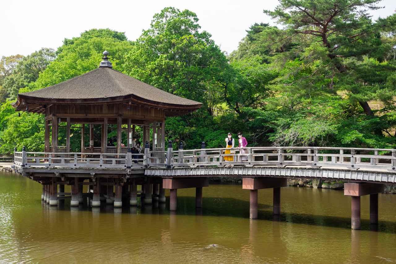 画像1: 奈良公園で「浮見堂」などを巡りながら母娘で過ごす時間