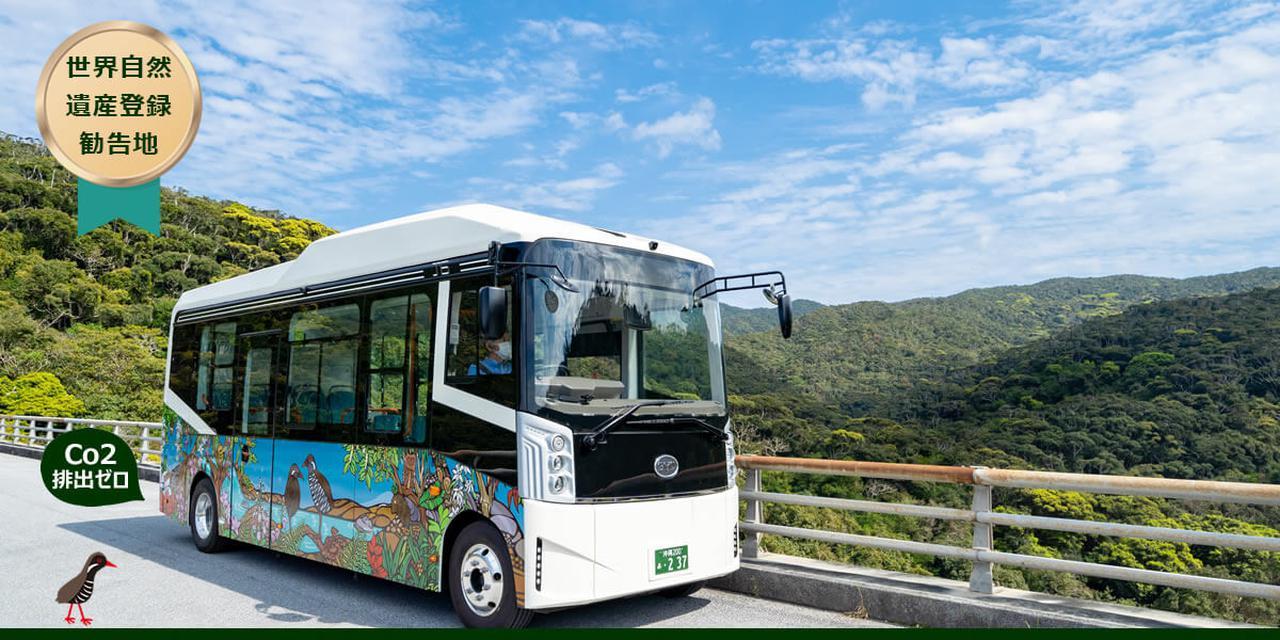 画像: 世界自然遺産候補地を電気バス 「やんばる黄金(くがに)号」で行くガイドツアー