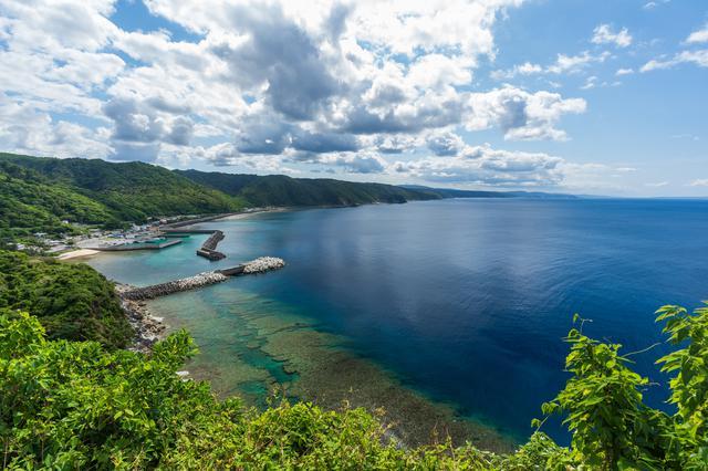 画像1: 旅が暮らしに変わる。注目の「2地域居住」体験ツアー 沖縄県・国頭村編
