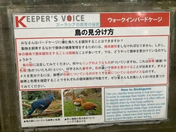 画像2: 提供:よこはま動物園ズーラシア
