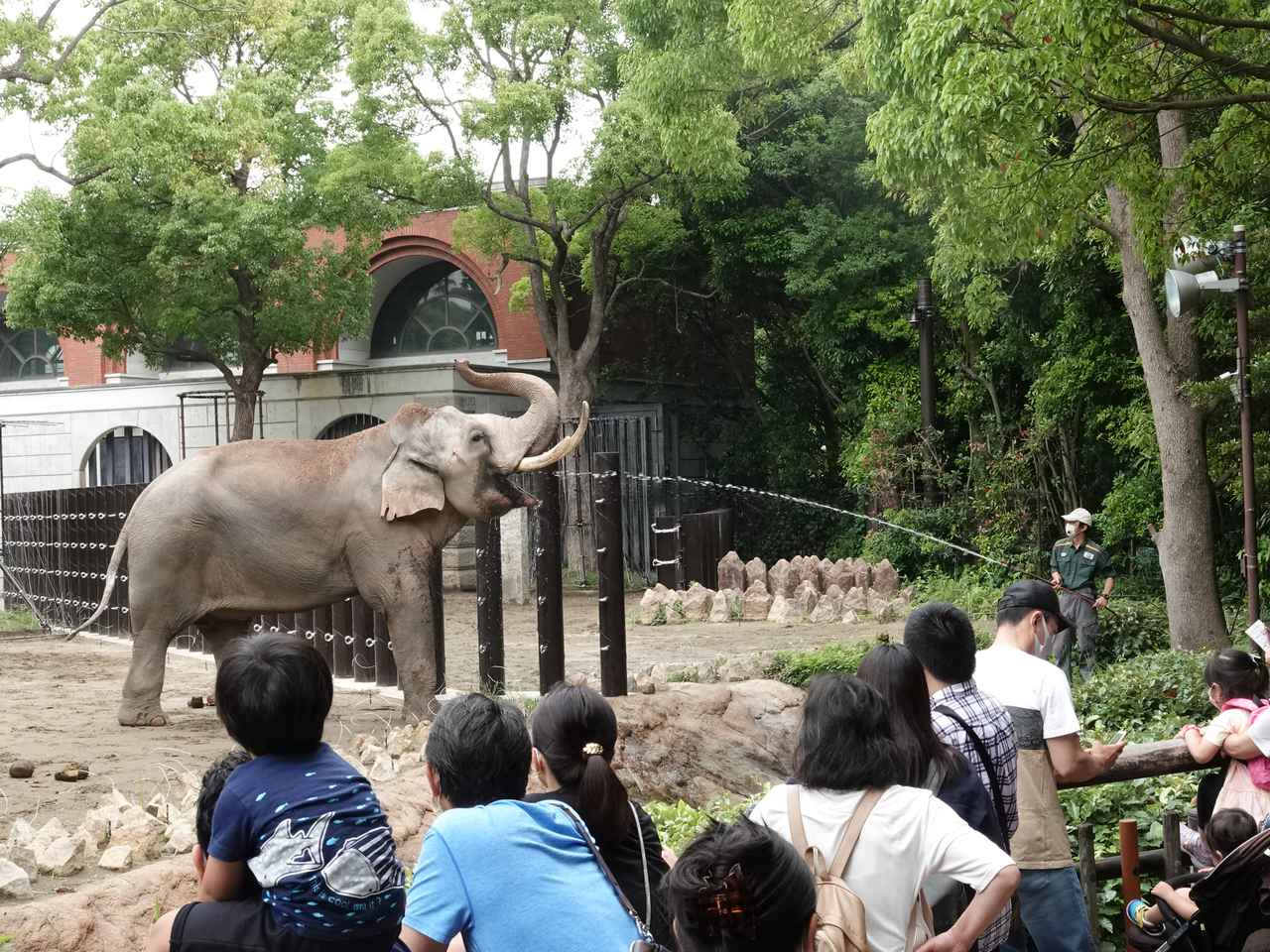 画像4: 提供:よこはま動物園ズーラシア