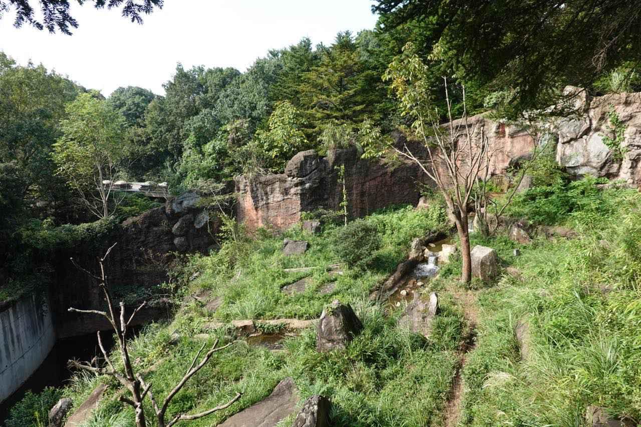 画像: 日本の山里ゾーン 提供:よこはま動物園ズーラシア