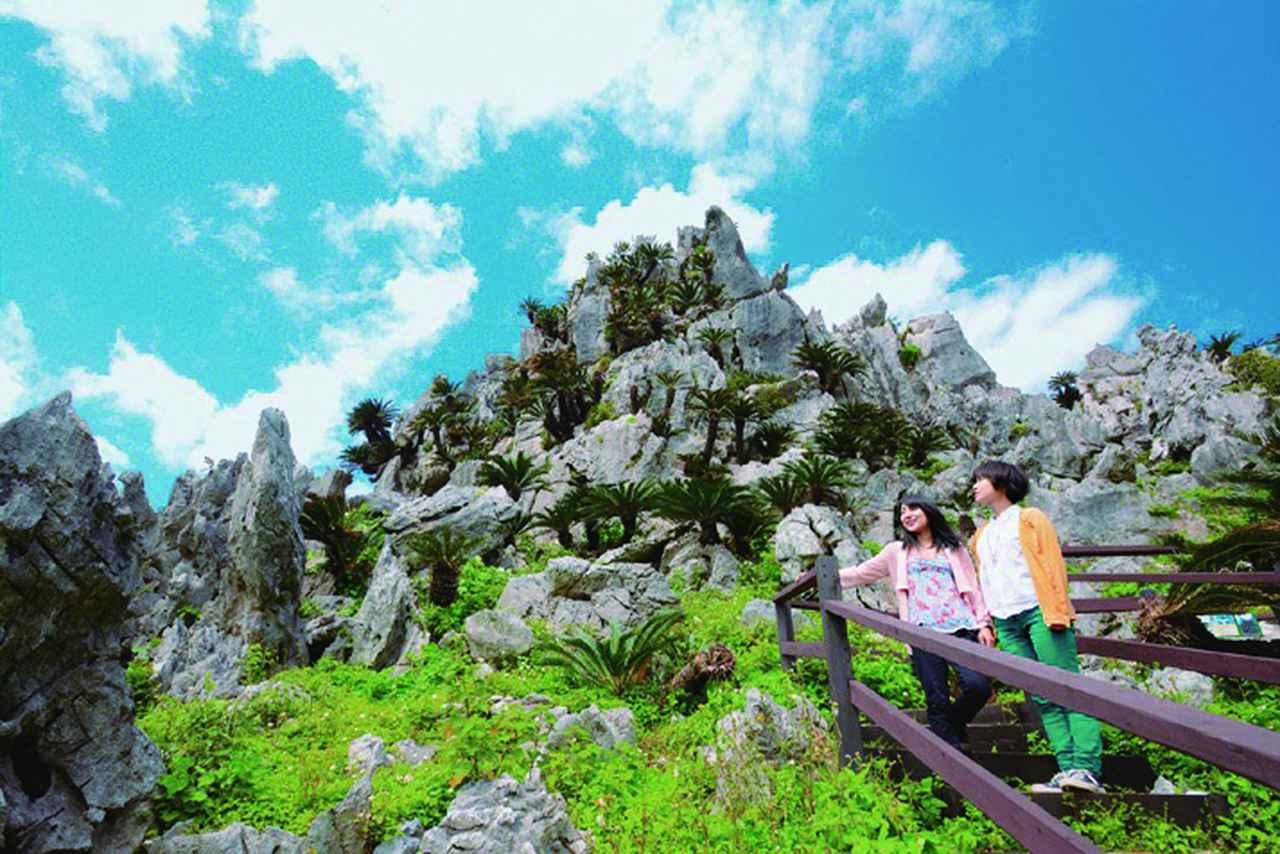 画像1: 自然と文化を肌で感じる旅。JALのエコツーリズムで日本の魅力を再発見