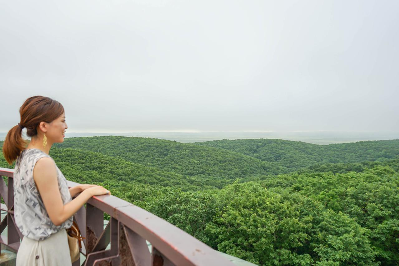 画像3: 釧路市湿原展望台で、雄大な自然景観と建築の造形美にふれる