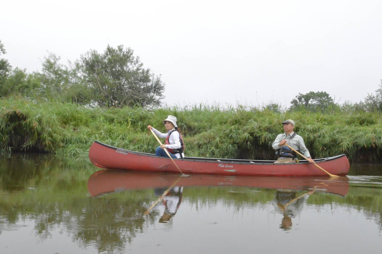 画像2: 釧路川をカヌーで下る、原始の湿原に溶けこむ時間