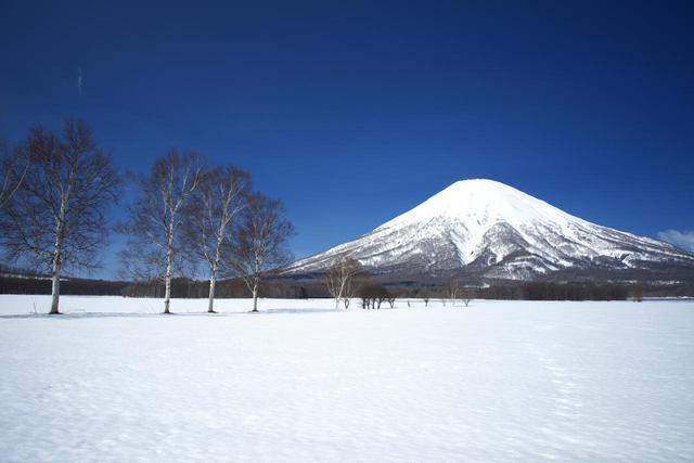 画像: ニセコ