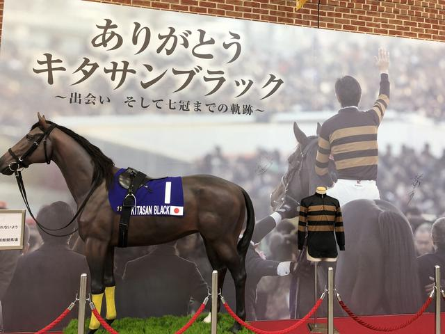 画像: 7冠馬キタサンブラック。歌手の北島三郎さんの会社大野商事が所有していたのは有名だ。収得賞金額は7億625万円、総賞金額は18億7684万3000円だ。