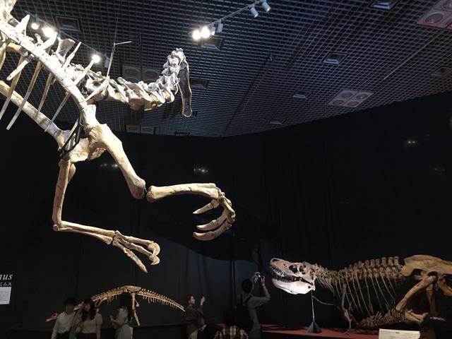 画像: デイノケイルスとタルボサウルス