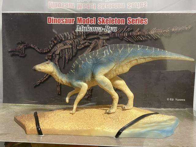 画像: カムイサウルス(むかわ竜)