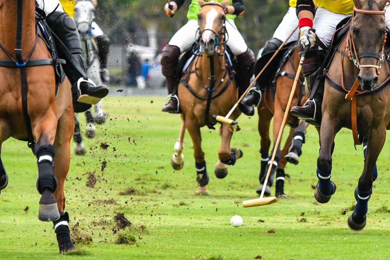 画像: 馬に乗った選手がスティックでボールを打ち相手ゴールに運ぶという激しい競技・ポロ
