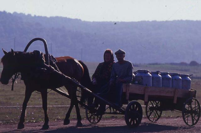 画像: ウラル山脈を越えようかというあたりで目にした風景。搾りたての牛乳であろう荷物を満載した馬車がポックリポックリと走る。街から遠く離れた場所では、このような情景がまだ多く見ることができあ。時の流れを感じさせるようなシーン。