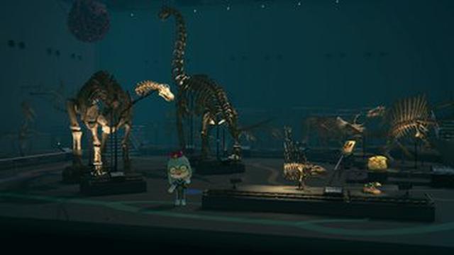 画像4: 島の博物館にて発見できる恐竜