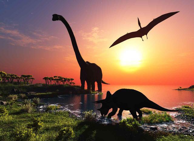 画像: トロサウルスはトリケラトプス?とりあえずトロサウルスにしておこうか! - dino.network | the premium web magazine for the Power People by Revolver,Inc.