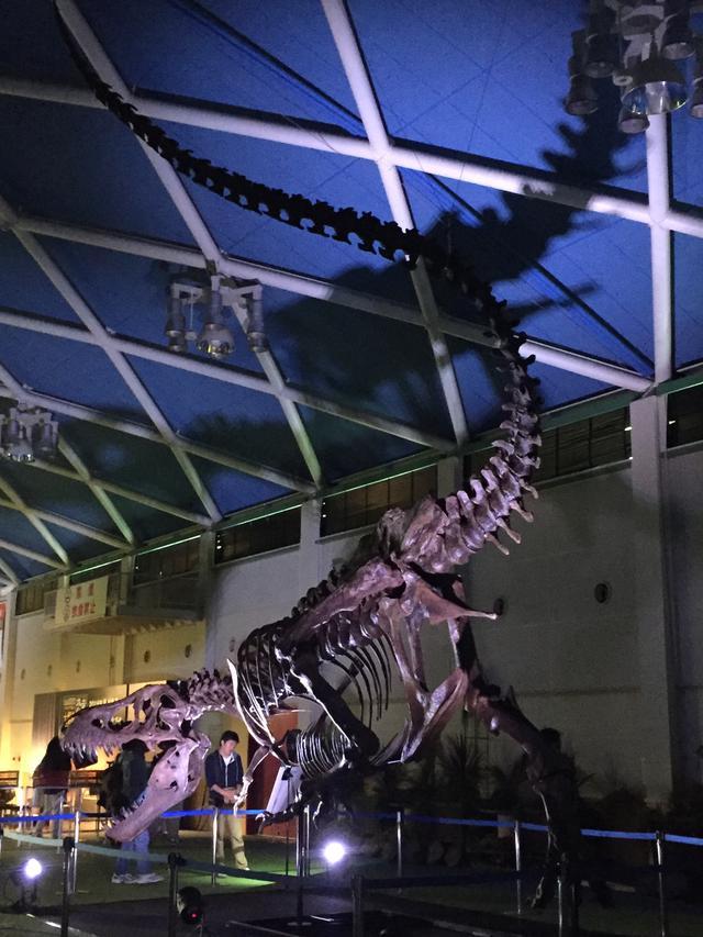 画像1: 何十億円!? ティラノサウルスがオークションに!その結果は…?
