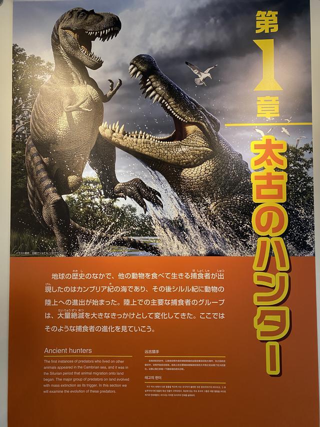 画像2: 陸のハンター達から恐竜を学べる特別展へ