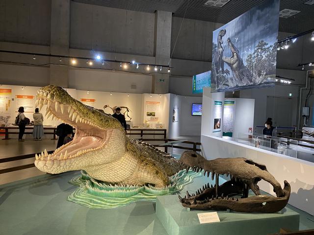 画像2: 襲われる恐竜