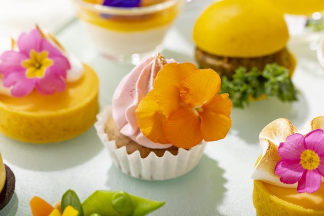 画像: バナナカップケーキ、ビーツクリーム(※)
