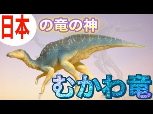 画像: 【新種の恐竜】北海道から「むかわ竜」が発掘されました!君の名は… youtu.be