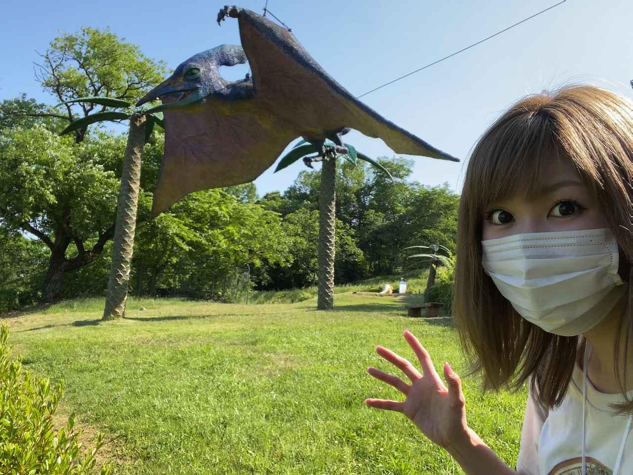 画像4: 恐竜わっしょい!
