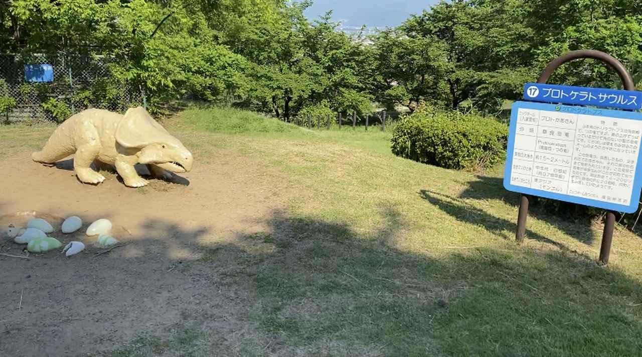 画像3: 恐竜わっしょい!