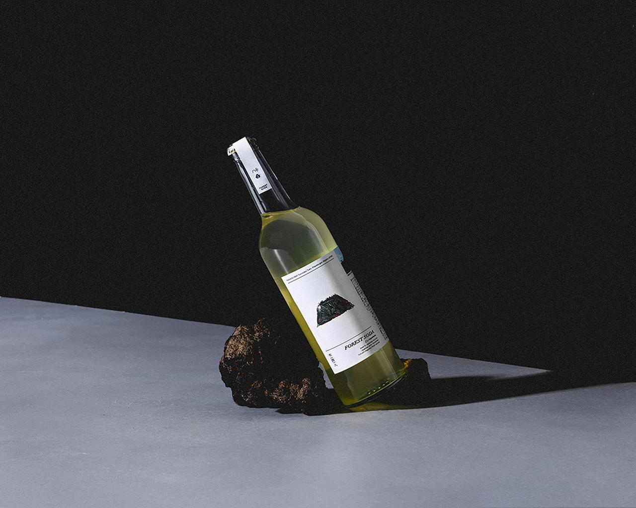 """画像3: """"森を飲む""""という新体験 木の食用化で作る炭酸水とシロップが発売"""