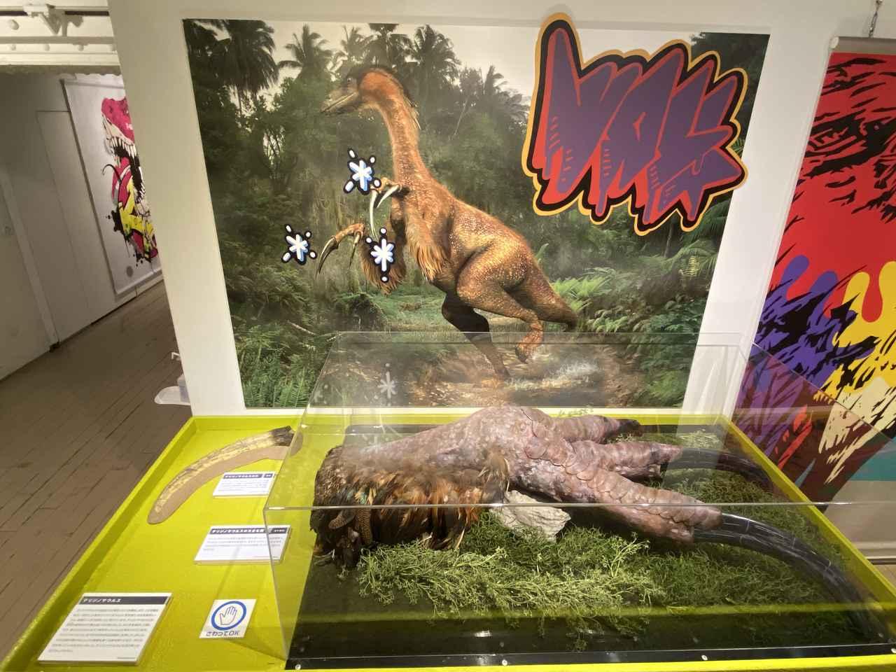 画像3: 第5章「恐竜から鳥へ」